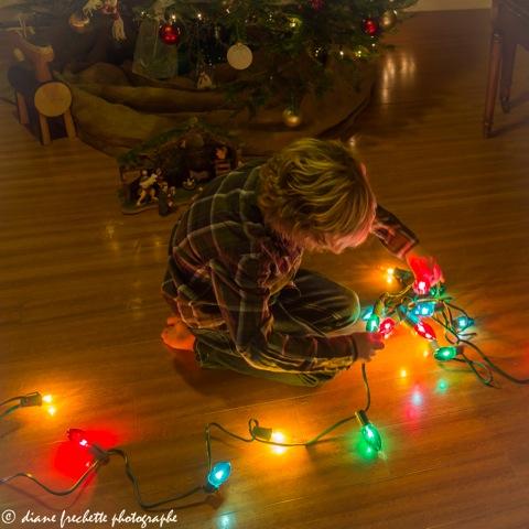 lou-and-christmas-lights-5